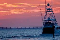 IMG_fisheriesblog copy